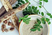 Moringa dried leaves 100% pure at best price | Moringa Wholesale